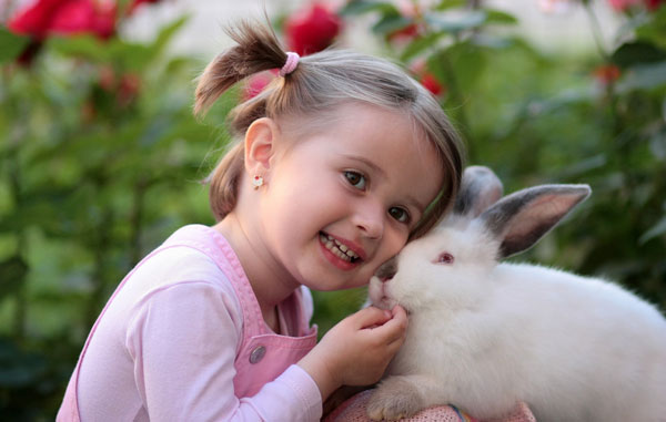 Small animal care - Cute girl and rabbit