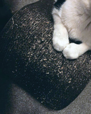 Cat care - a scratching post