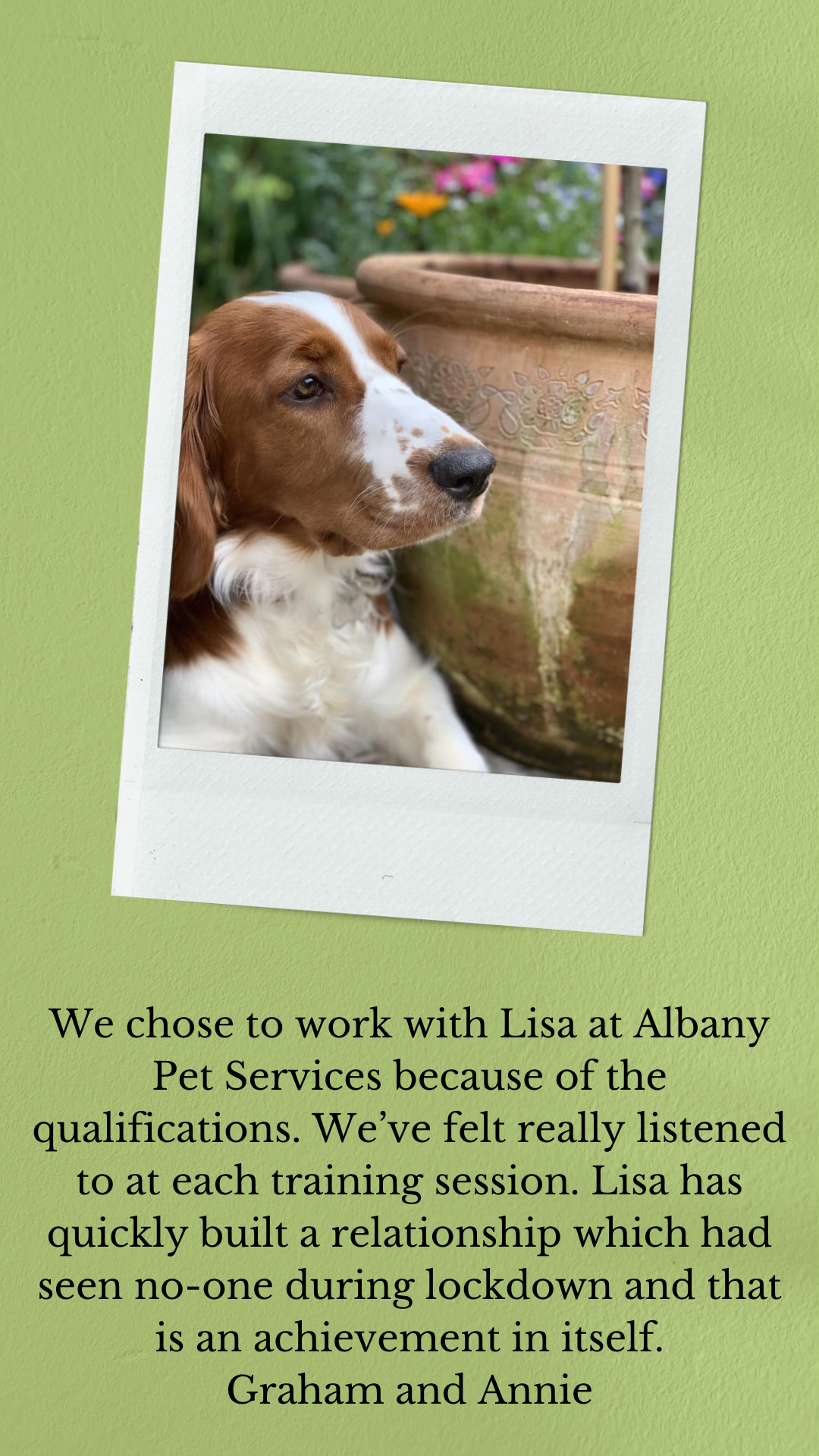 We chose to work with Lisa at Albany Pet Services because of the qualifications. We've felt really listened to at each training session. Lisa has quickly built a relationship which had seen no-one during lockdown and that is an achievement in itself.